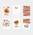 autumn sale set banners post vector image