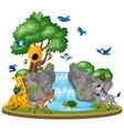 background scene wild animals waterfall vector image vector image