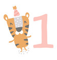 birthday tiger vector image vector image