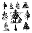 Christmas tree sketch on white background vector image vector image