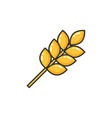common food ears of wheat icon isolated vector image