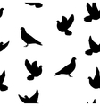Isolated silhouette of the bird dove vector image vector image