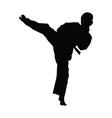 Karate boy kicking silhouette vector image vector image