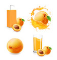 apricot juice collection in splash vector image vector image