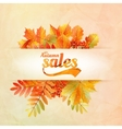 Autumn sale poster with leaves on a old paper vector image vector image