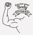 fitness lifestyle vector image vector image