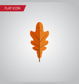 isolated frond flat icon linden element vector image