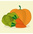 Organic shop design vector image vector image