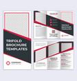 professional corporate business tri-fold brochure vector image