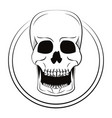 skull cool sketch vector image vector image