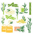 sugar cane sugarcane plant harvest icons vector image vector image