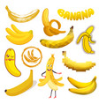banana yellow tropical fruit or healthy vector image