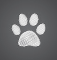 cat footprint sketch logo doodle icon vector image