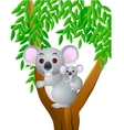 cute mother and baby koala vector image vector image