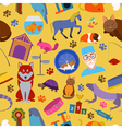 Domestic pets background Pattern Seamless vector image