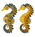 Hand drawn swimming sea horse vector image vector image
