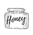 Honey jar freehand pencil drawing vector image vector image