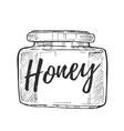 Honey jar freehand pencil drawing vector image vector image