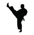 Karate trainer silhouette vector image vector image