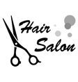 symbol of hair salon vector image vector image