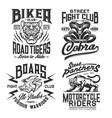 tiger panther cobra boar t-shirt print mockup vector image