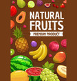 tropical and garden fruits farm market harvest vector image vector image