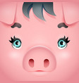 cute swine girl pig woman square cartoon vector image vector image