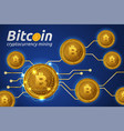 golden bitcoin in shining light effect on blue vector image vector image