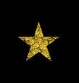 golden broken star vector image vector image