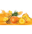 pineapples and oranges on a fruit juice wave vector image vector image