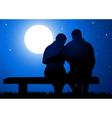 Romantic Night vector image vector image