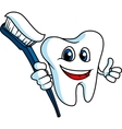 Smiling tooth with tooth-brush vector image vector image
