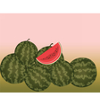 Watermelon with slices isolated vector image vector image