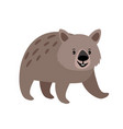 wombat cute animal icon vector image vector image