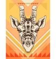 hand drawn with giraffe head vector image