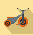 boy tricycle icon flat style vector image vector image