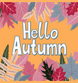 card with words hello autumn and fall leaves vector image vector image