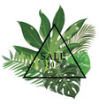 frame with leaves of tropical plants frame for vector image