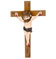 Jesus Christ in the cross vector image