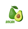 logo avocado farm design vector image vector image