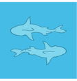 silhouette of two sharks blue background top view vector image vector image