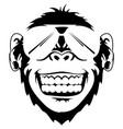 ape vector image vector image