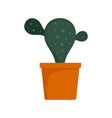 natural cactus pot icon flat style vector image vector image