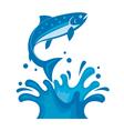 salmon fish on waves vector image