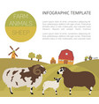 sheep farming infographic template ram ewe lamb vector image vector image