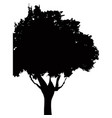 silhouette tree plant foliage branch trunk vector image vector image