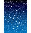 snowflake sky vector image vector image