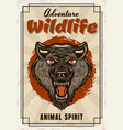 wild animal decorative poster with wolf vector image vector image