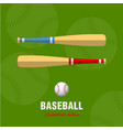 baseball bat and ball icon vector image