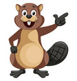 beaver showing something on white background vector image vector image